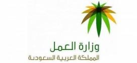 وزارة العمل السعودية