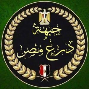 جبهة درع مصر