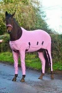 حصان بفستان سوارية