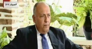 وزير الخارجية المصرى