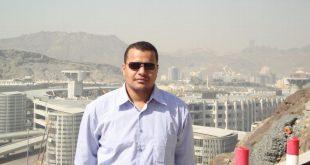 المهندس المصرى